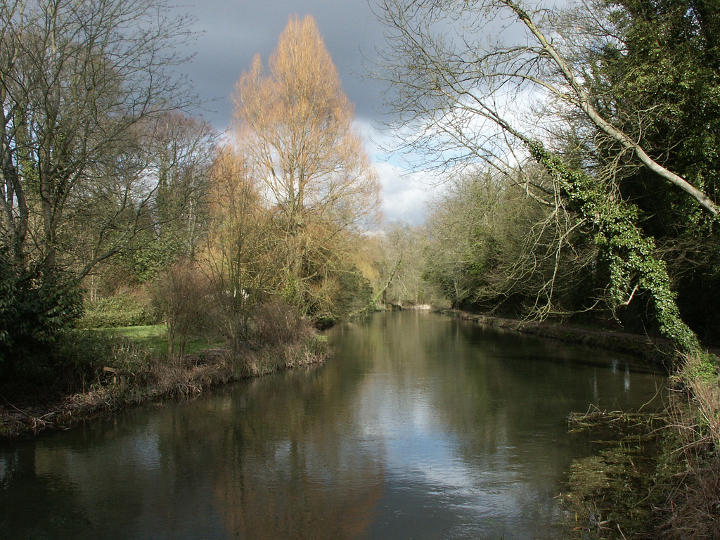Down By The Itchen