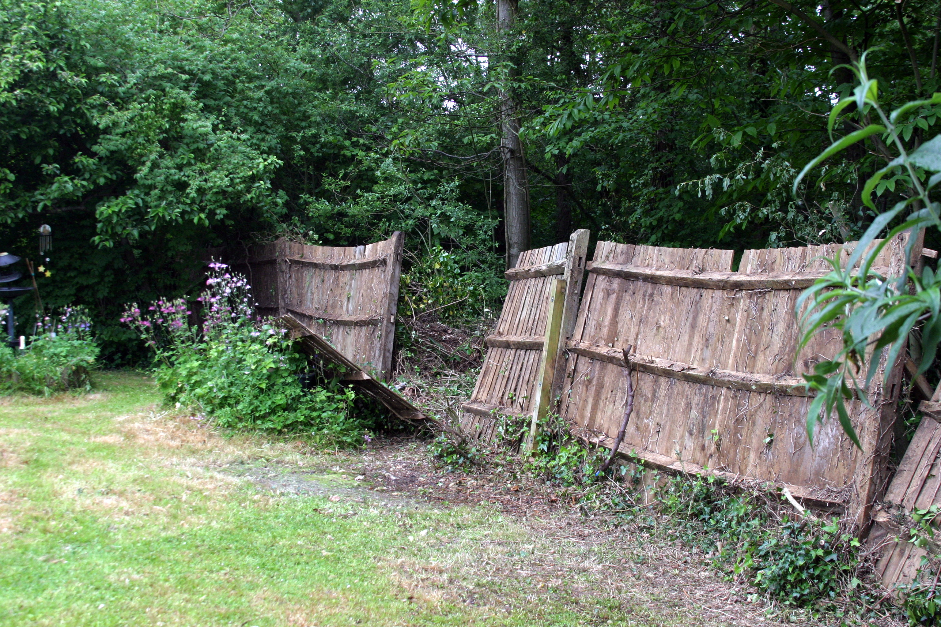 So that's what the fence looks like.