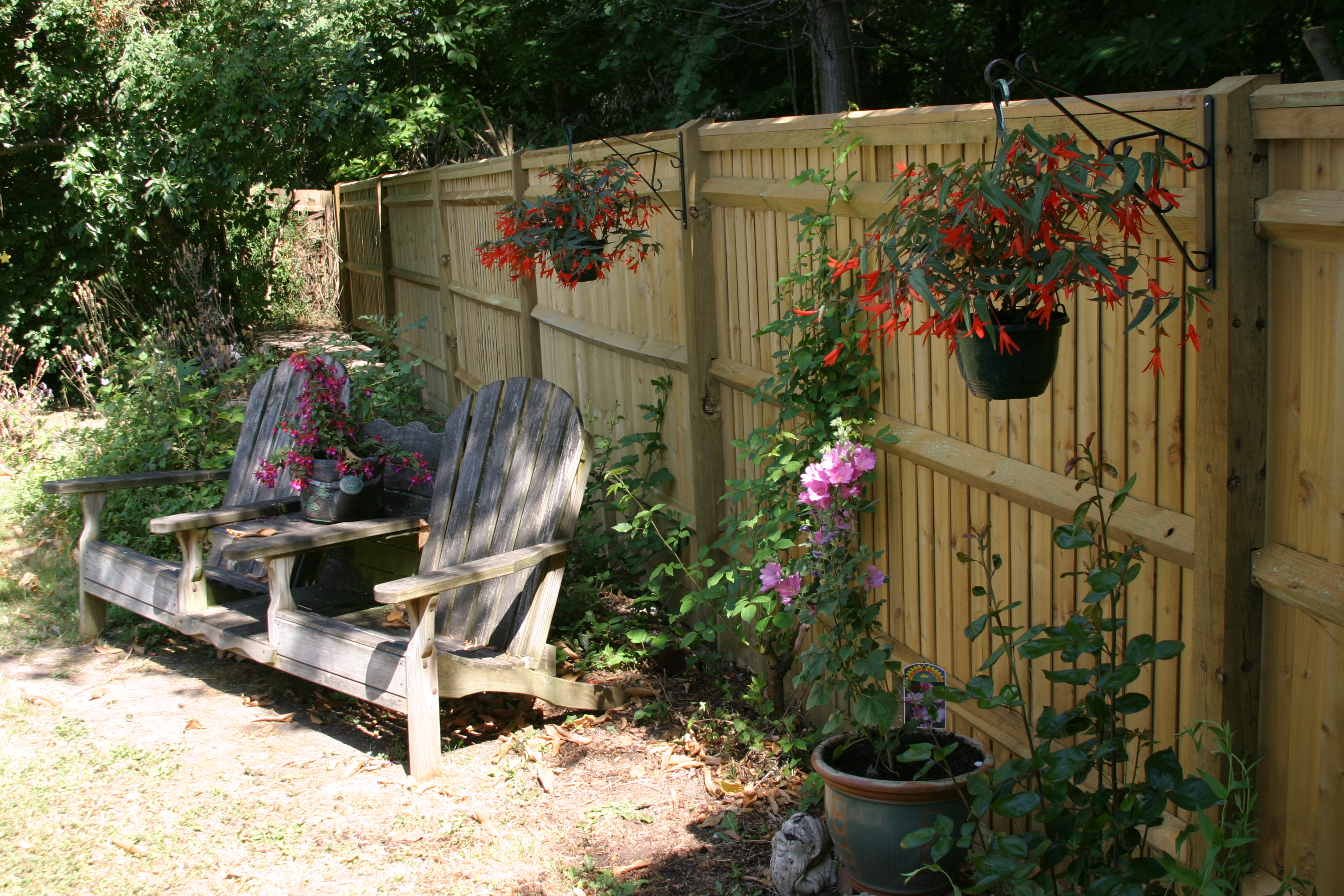 New fence, new plants. Getting our garden back.