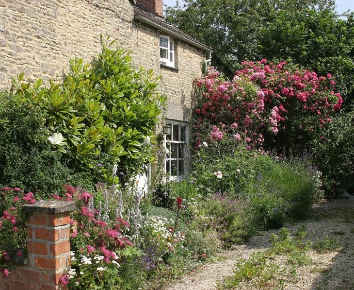 Bampton - Church View - A real cottage garden.