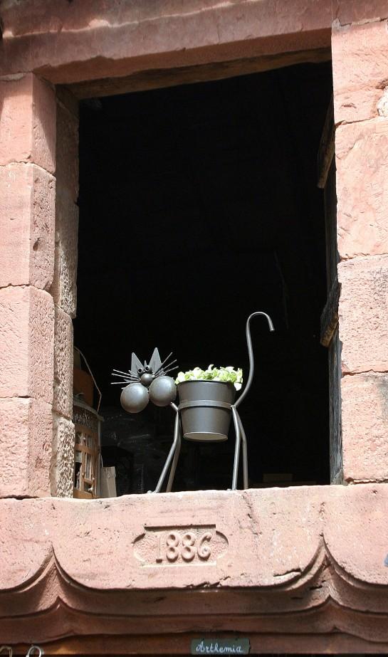 Collonges-la-Rouge, France - Le Chat