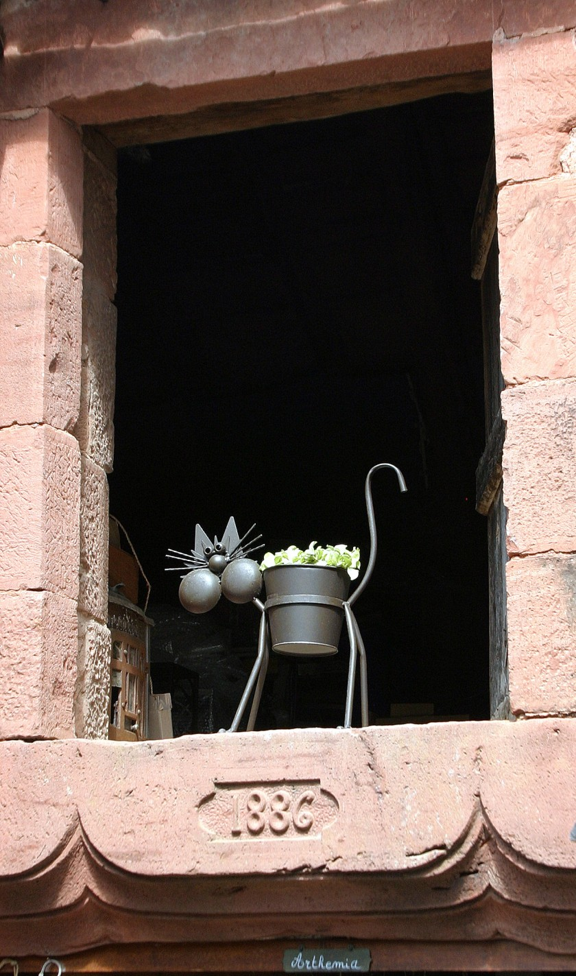 Collonges-la-Rouge, France - Le Chat