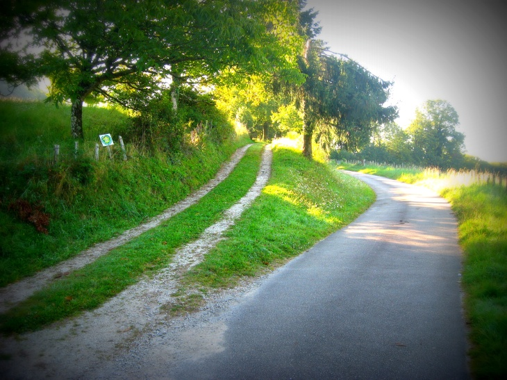 This is the lane that gives access to the gite.