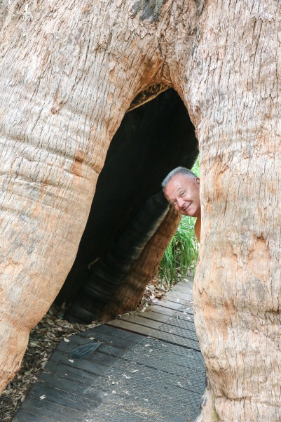 Boo !! - Valley of the Giants, WA