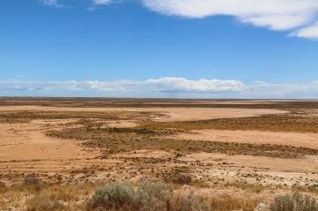Plains - White Bluff