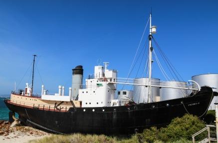 Cheynes IV Whalechaser