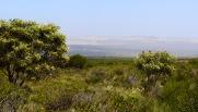 View - Kalbarri, WA