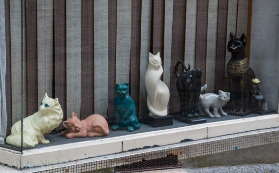 Window display - Bort-les-Orgues