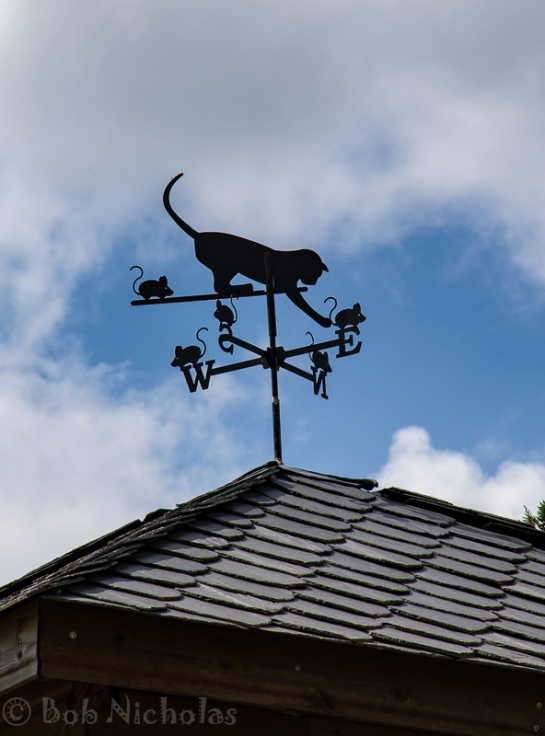 weather_vane