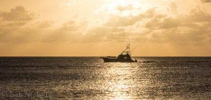 Antigua - Heading Home