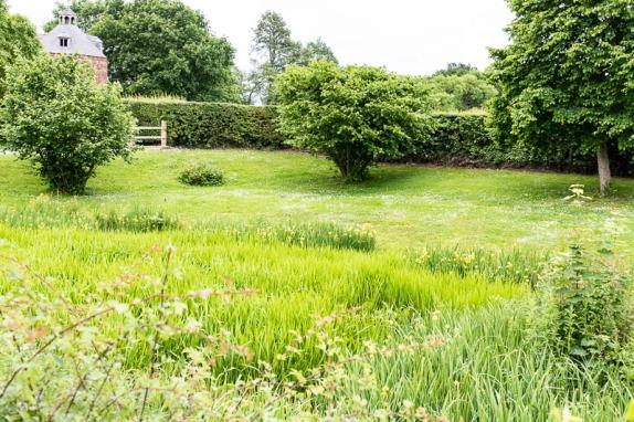 Marsh / Meadow - Erddig