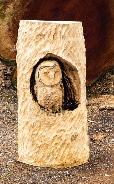 Owl by Simon O'Rourke