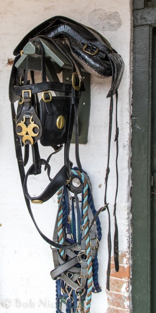 Bridle Wear - Erddig