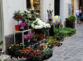 Capri - Just off Piazza Umberto I