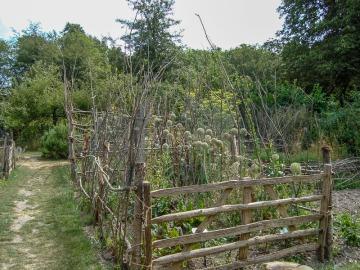 Garden 17c House from Walderton, Sussex