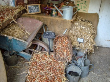 Potting shed contents