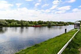 Rana @ Acton Bridge, Cheshire