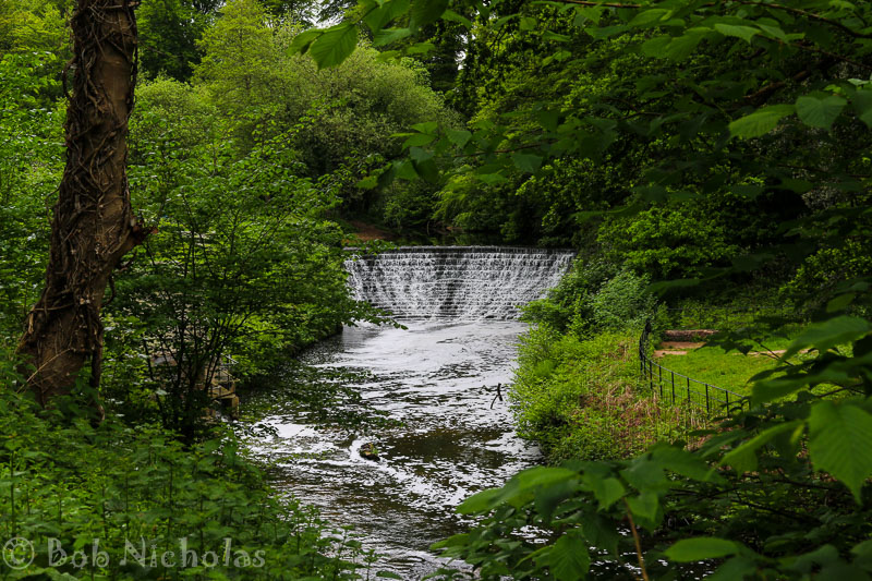 The Weir, River Bollin at Quarry Bank