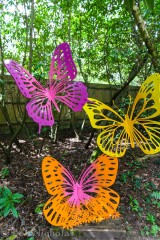 3 papillons (Butterfly Trio)