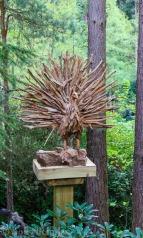Driftwood Peacock