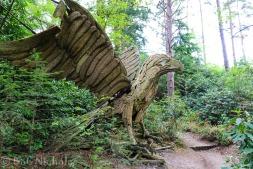 Cork Eagle