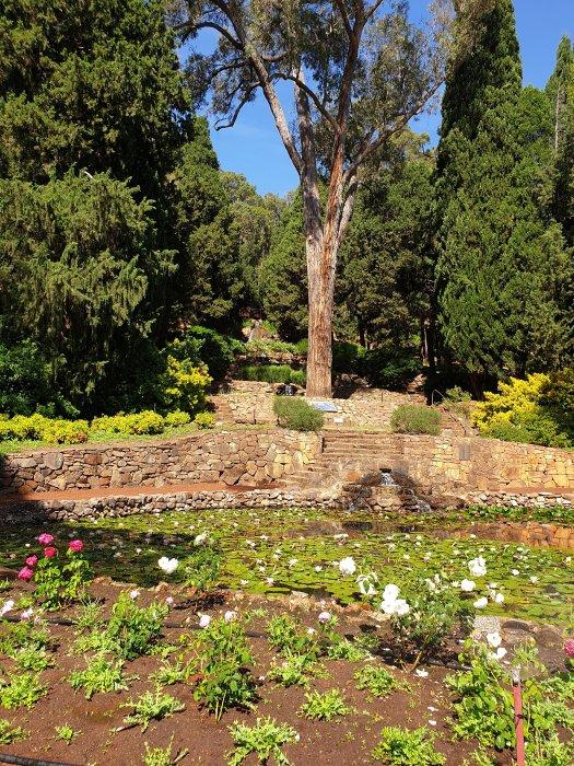 Araluen - Botanical Park - Grove of the Unforgotten